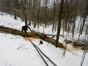 This major blowdown on the Keystone wet-dry lines caused the vacuum to plummet by 15 lbs.