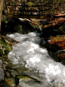 Falls Brook