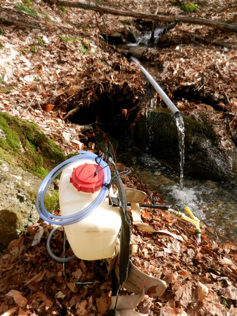 Tubing cleanup continues. Here is a water station set up at a vernal pool.