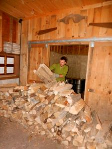 Ross has to walk further and further with each chunk as the pile in the wood shed recedes.